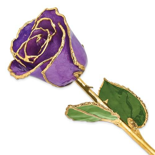 Nespoli Jewelers Lilac 24k Gold Dipped Rose