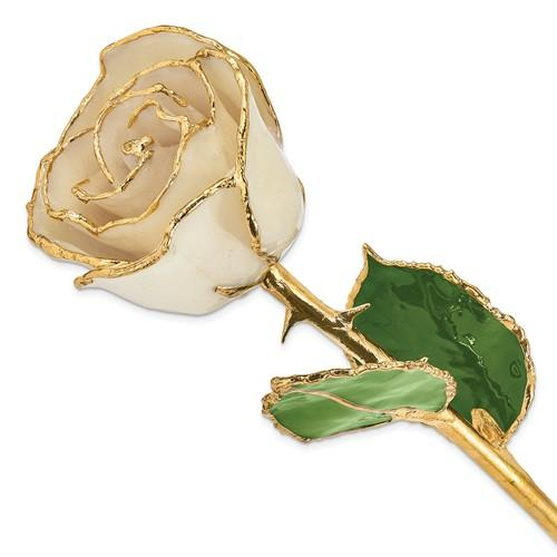 Nespoli Jewelers White 24k Gold Dipped Rose