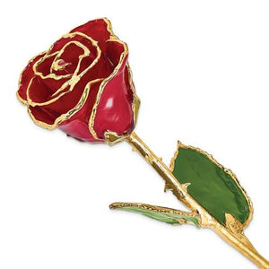 Nespoli Jewelers Red 24k Gold Dipped Rose