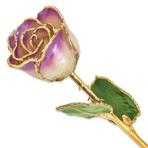 Nespoli Jewelers Amethyst 24k Gold Dipped Rose