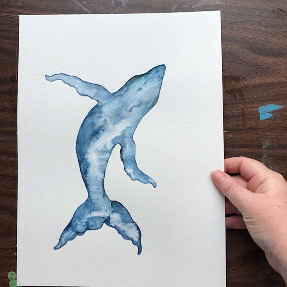 9x12 Indigo Blue and White Humpback Whale with touches of grey. Original Watercolor painting