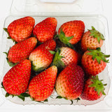 2 Punnets Korean Strawberries (Total 500g) - M Cake Boutique