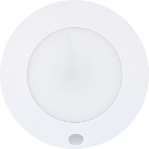 LED Motion Activated Ceiling Light | LG3101W