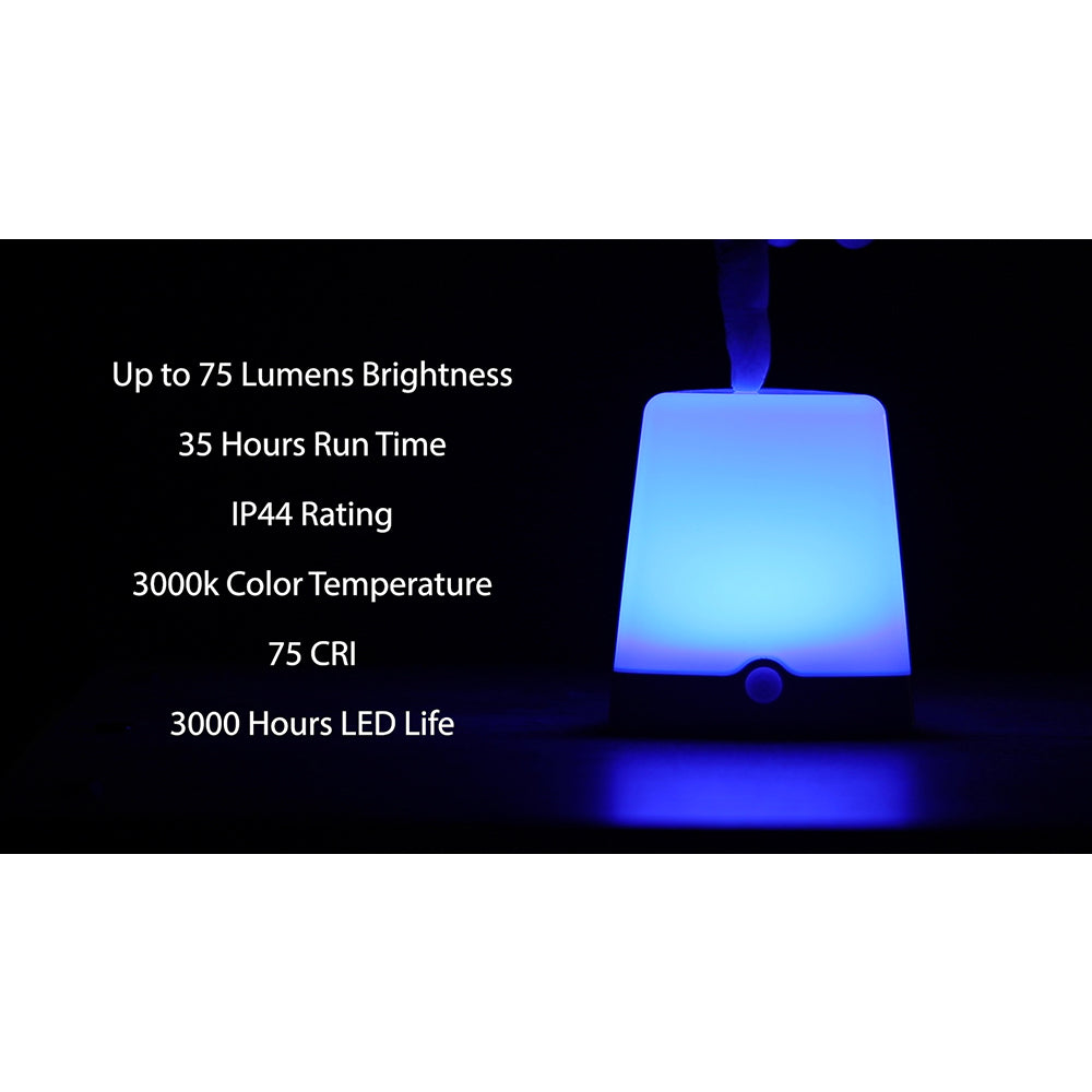 Indoor/Outdoor Color-Changing LED Light | LS3101RGB
