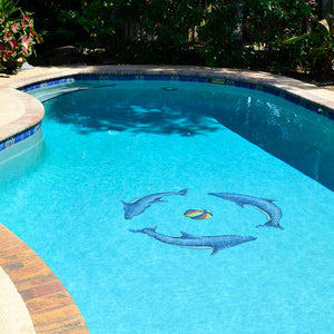 Dolphin Group, Multi Color Ball | DOLGRPS-MC | Pool Mosaic by Artistry in Mosaics