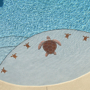 "Loggerhead Turtle C Mini - 4"" Brown - Pool Mosaic"