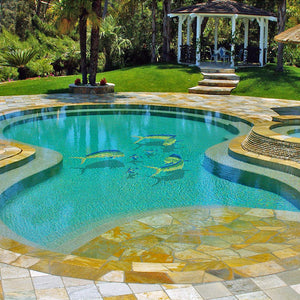 Mahi Mahi-Downward w/Shadow | MM14-18/SH | Pool Mosaic by Custom Mosaics