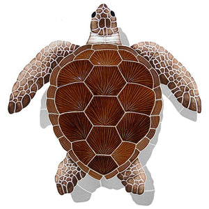 TLSBROS Loggerhead Turtle - Brown w/Shadow Artistry in Mosaics