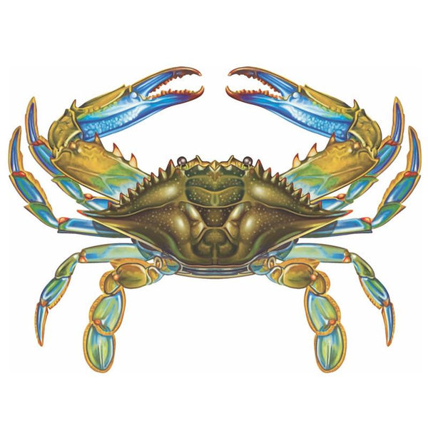 It's just a photo of Witty Blue Crab Drawing