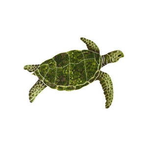 Sea Turtle - Green - Pool Mosaic