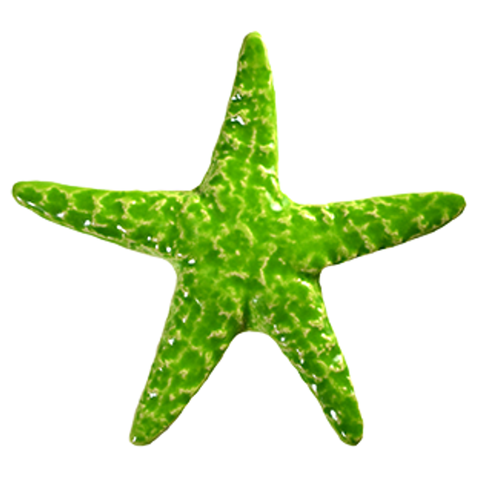 "STALIMB Starfish - Lime  5"" Artistry in Mosaics"
