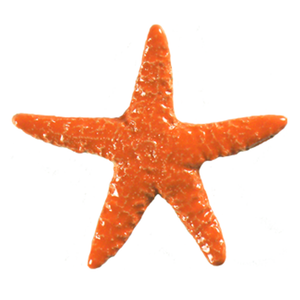 "STAORAB Starfish - Orange 5"" Artistry in Mosaics"