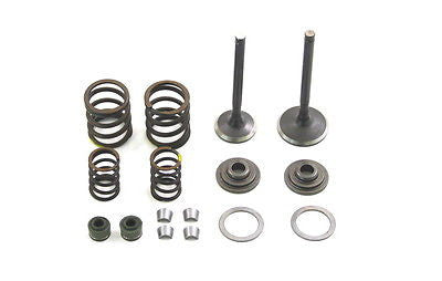 Replacement Valve Kit - Zongchen ZS Heads - YX160 - TBW0599 - The Best Minimoto, Pitbike, Minibike Source - Factory Minibikes