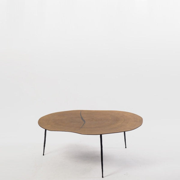 Hayward Belgium Wood Veneer Coffee Table