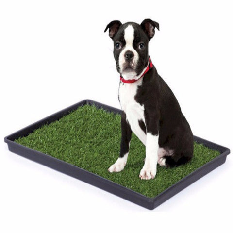 Tinkle Turf - Small - BD Luxe Dogs & Supplies