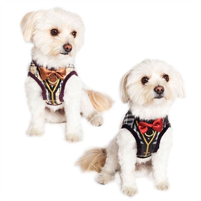 Dapper Boy Suspenders Harness - BD Luxe Dogs & Supplies - 1