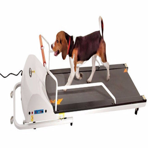 PetRun PR720F Dog Treadmill - BD Luxe Dogs & Supplies