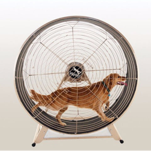 GoPet TreadWheel For Large Dogs - BD Luxe Dogs & Supplies