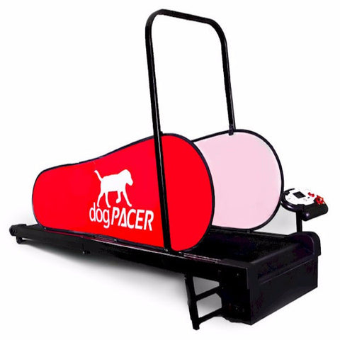 DogPacer Mini Treadmill - BD Luxe Dogs & Supplies