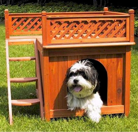 Room with a View Dog House - BD Luxe Dogs & Supplies