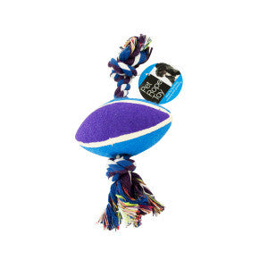 Football & Knotted Rope Dog Toy