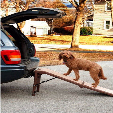 Free-Standing Pet Ramp - BD Luxe Dogs & Supplies