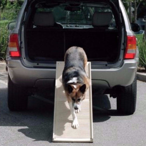 PetStep Folding Dog Ramp - BD Luxe Dogs & Supplies