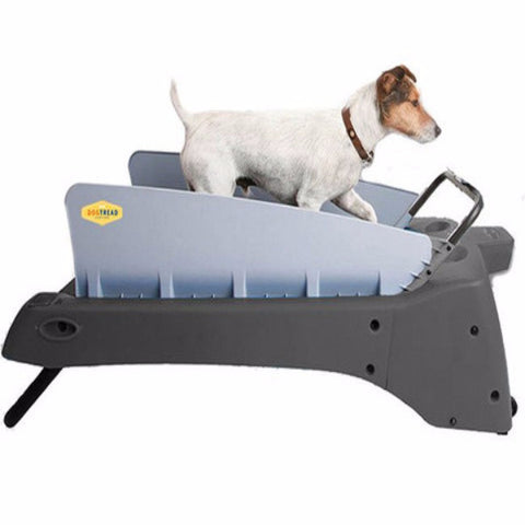 DogTread Small Dog Treadmill - BD Luxe Dogs & Supplies