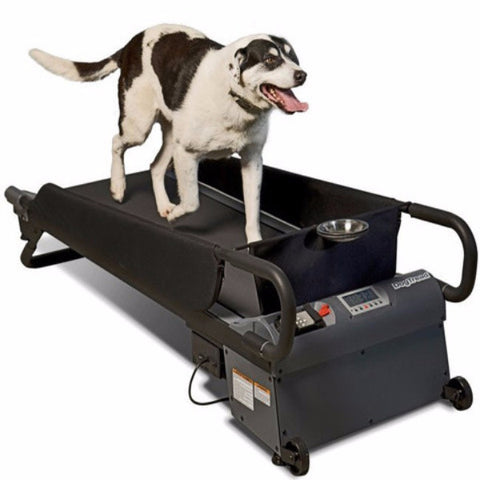 DogTread Medium Dog Treadmill - BD Luxe Dogs & Supplies