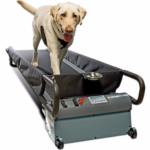 DogTread Large Dog Treadmill - BD Luxe Dogs & Supplies