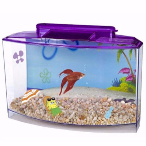 SpongeBobs Large Betta Tank - BD Luxe Dogs & Supplies