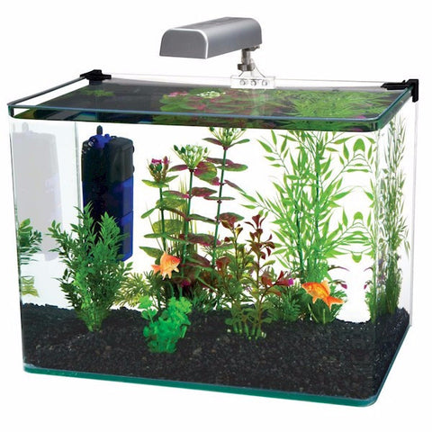 Radius 5 Gallon Glass Aquarium Kit - BD Luxe Dogs & Supplies