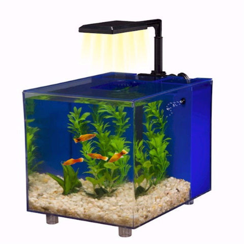 Prism Nano Aquarium Kit - BD Luxe Dogs & Supplies