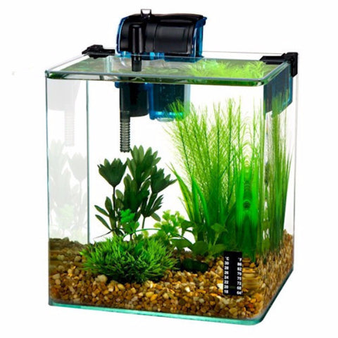 Vertex Desktop Aquarium Kit - BD Luxe Dogs & Supplies