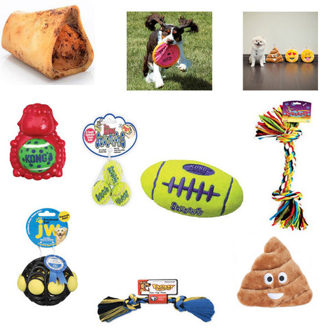 Special super bundle offer - BD Luxe Dogs & Supplies