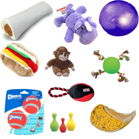 10 piece super bundle package - BD Luxe Dogs & Supplies