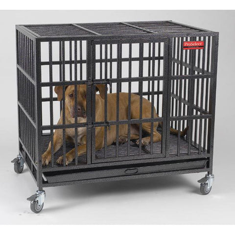 EMPIRE DOG CRATE HEAVY DUTY DOG CAGE - BD Luxe Dogs & Supplies