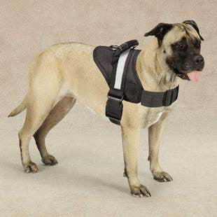 GUARDIAN GEAR EXCURSION SAFETY GRIP HARNESS - BD Luxe Dogs & Supplies - 1