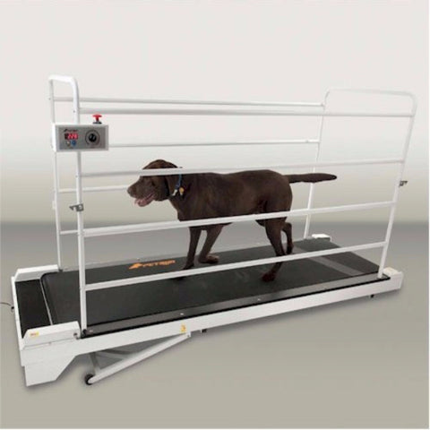 PetRun PR730 Dog Treadmill - BD Luxe Dogs & Supplies