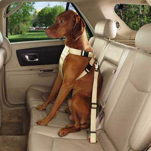 KHAKI RIDE RIGHT COMFORT CAR HARNESS FOR DOGS - BD Luxe Dogs & Supplies