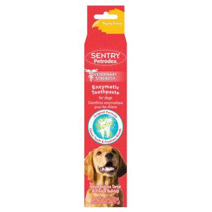 PETRODEX POULTRY FLAVORED ENZYMATIC TOOTHPASTE 6.2OZ VALUE SIZE - BD Luxe Dogs & Supplies