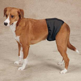 CLEAN GO PET WASHABLE MALE WRAP - BD Luxe Dogs & Supplies - 1