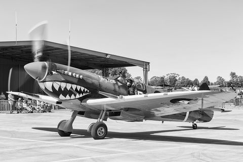 Image of a Spitfire HFVIII while it taxis at Temora Airport.