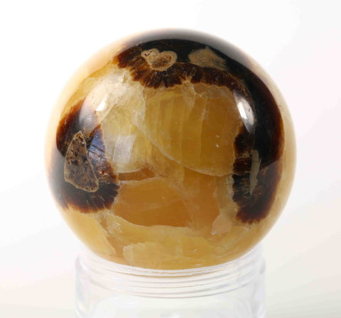 Septyre Septarian Sphere - SS274