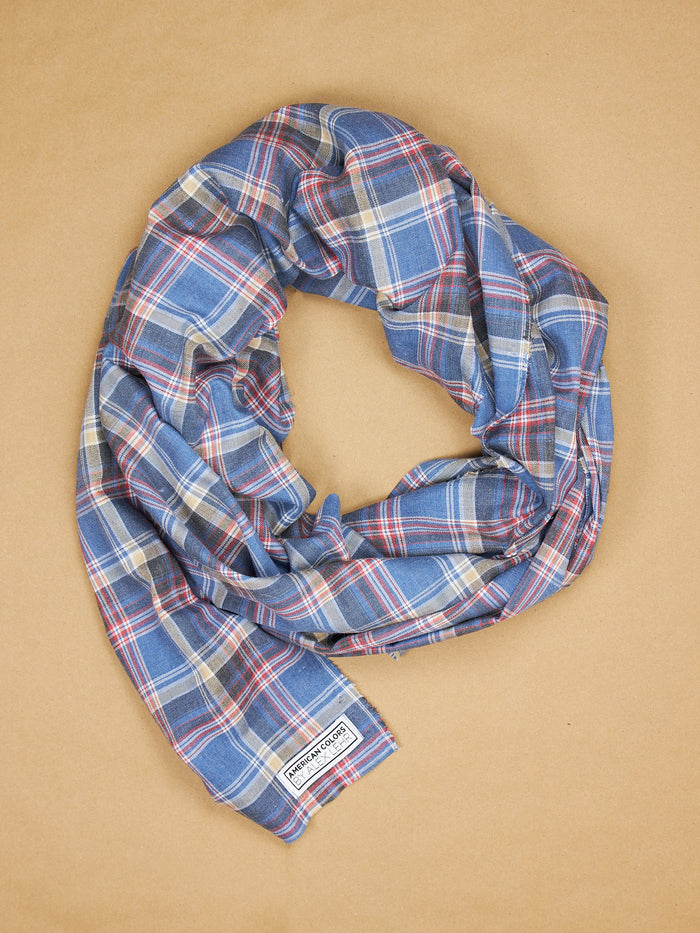 The Alex Lehr Scarf in Brighton Plaid Cotton