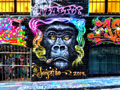 The Groovy Gorilla  - Print