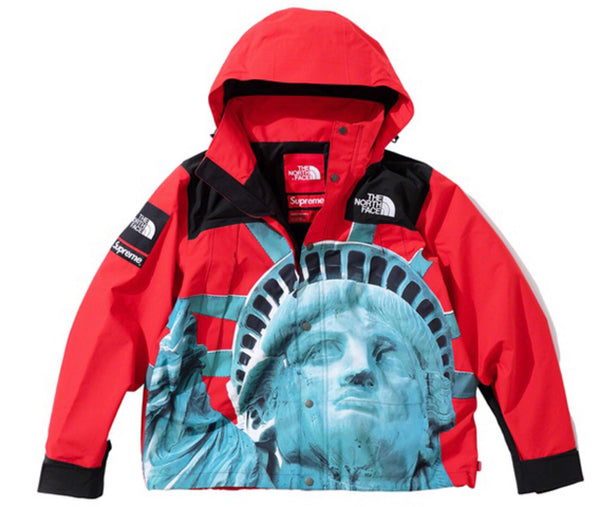 Supreme X the north face Statue of Liberty mountain jacket