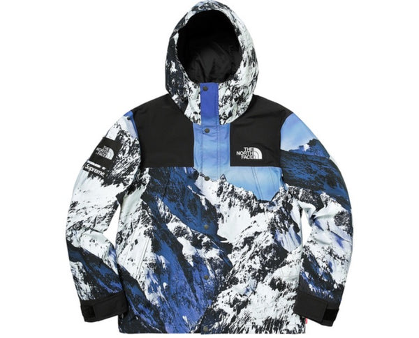 Supreme X the north face TNF mountain parka