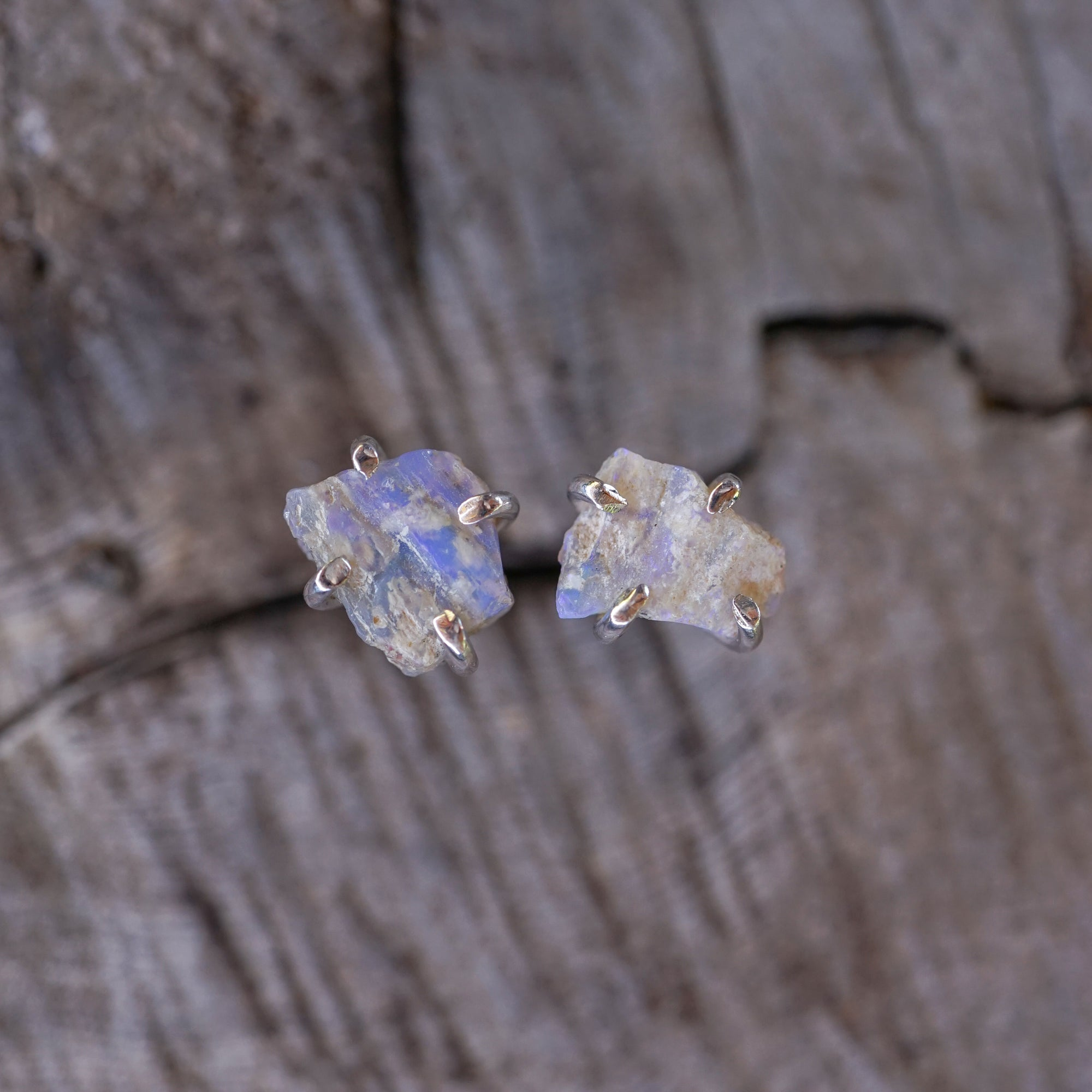 Fossil Opal Earrings
