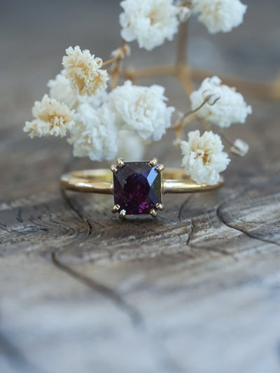 Ruby and Pepper Ring in Gold